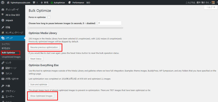 bulk-optimize11-fujimotoyousuke-com-wordpress